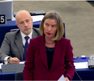 Speech by High Representative/Vice-President Federica Mogherini at the European Parliament Plenary Session on the human rights situation in Turkey and the situation in Afrin, Syria