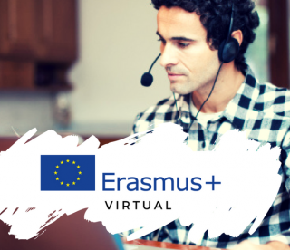 Erasmus+ goes virtual