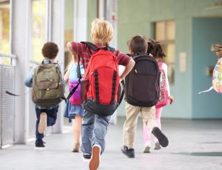 Preventing and combating selected health risk factors in schools