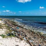 Single-use plastics: Commission welcomes ambitious agreement on new rules to reduce marine litter