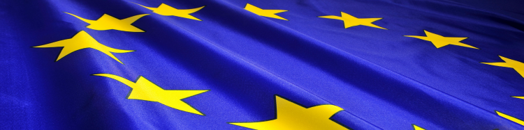 The EU flag : close up