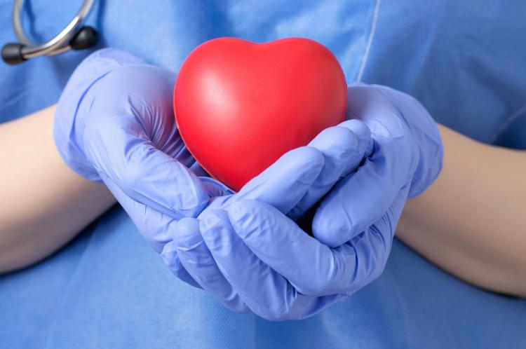 female doctor handling a symbolic heart